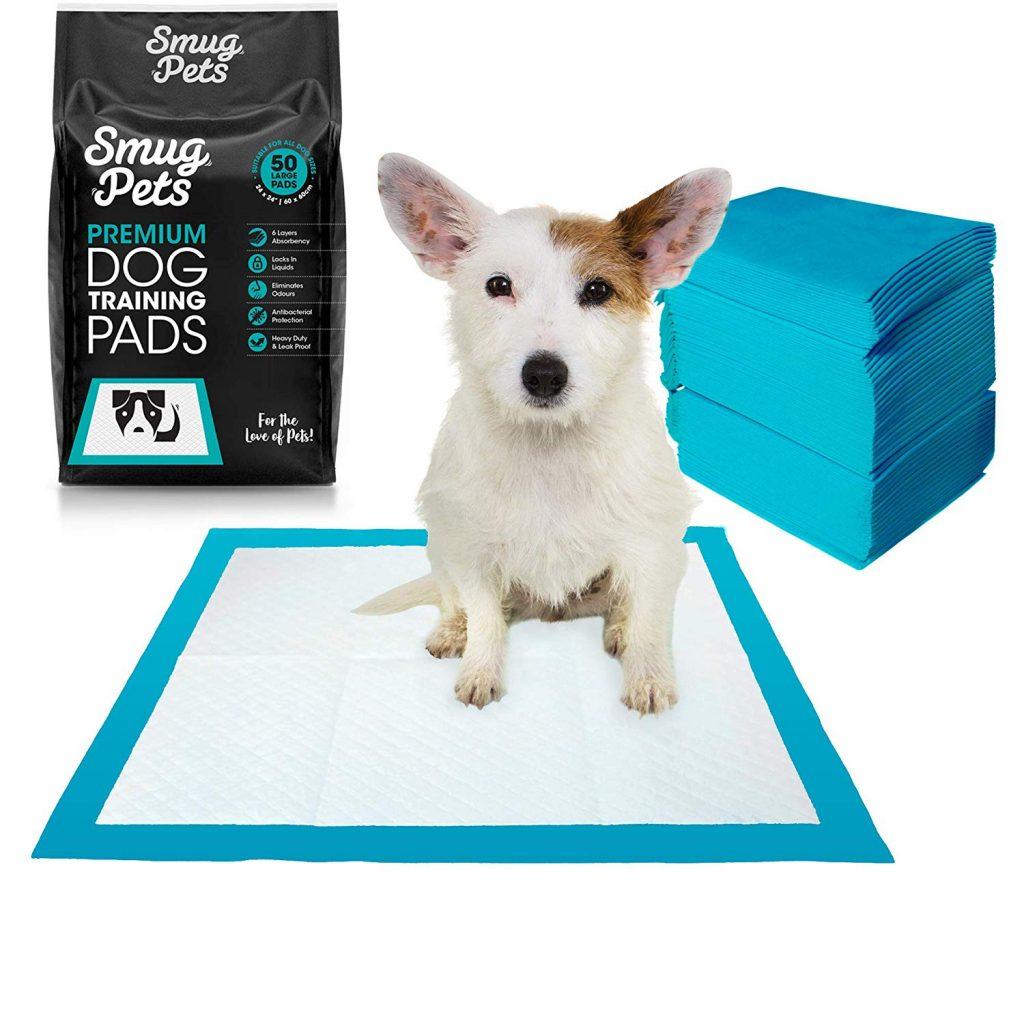 tapis educateur chien test avis