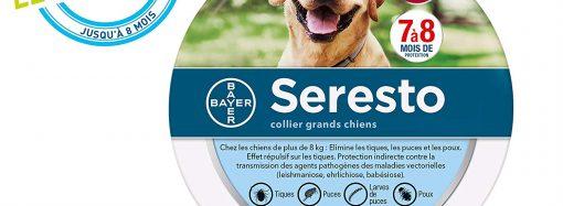 Test de Seresto : mon avis sur ce collier antiparasite pour tous les chiens